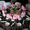Events with Elegance - Open House - Houston, TX