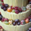 Scrumptious Cake with Sugar Coated Fruits and White Chocolate Straws