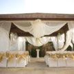 Summer Outdoor Wedding Ceremony in Houston, TX