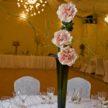 Three Flowers in Centerpiece