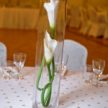 Two Flowers & Stems in Centerpiece